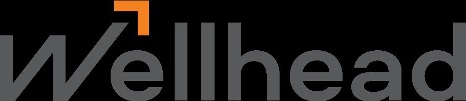 Логотип Wellhead Main
