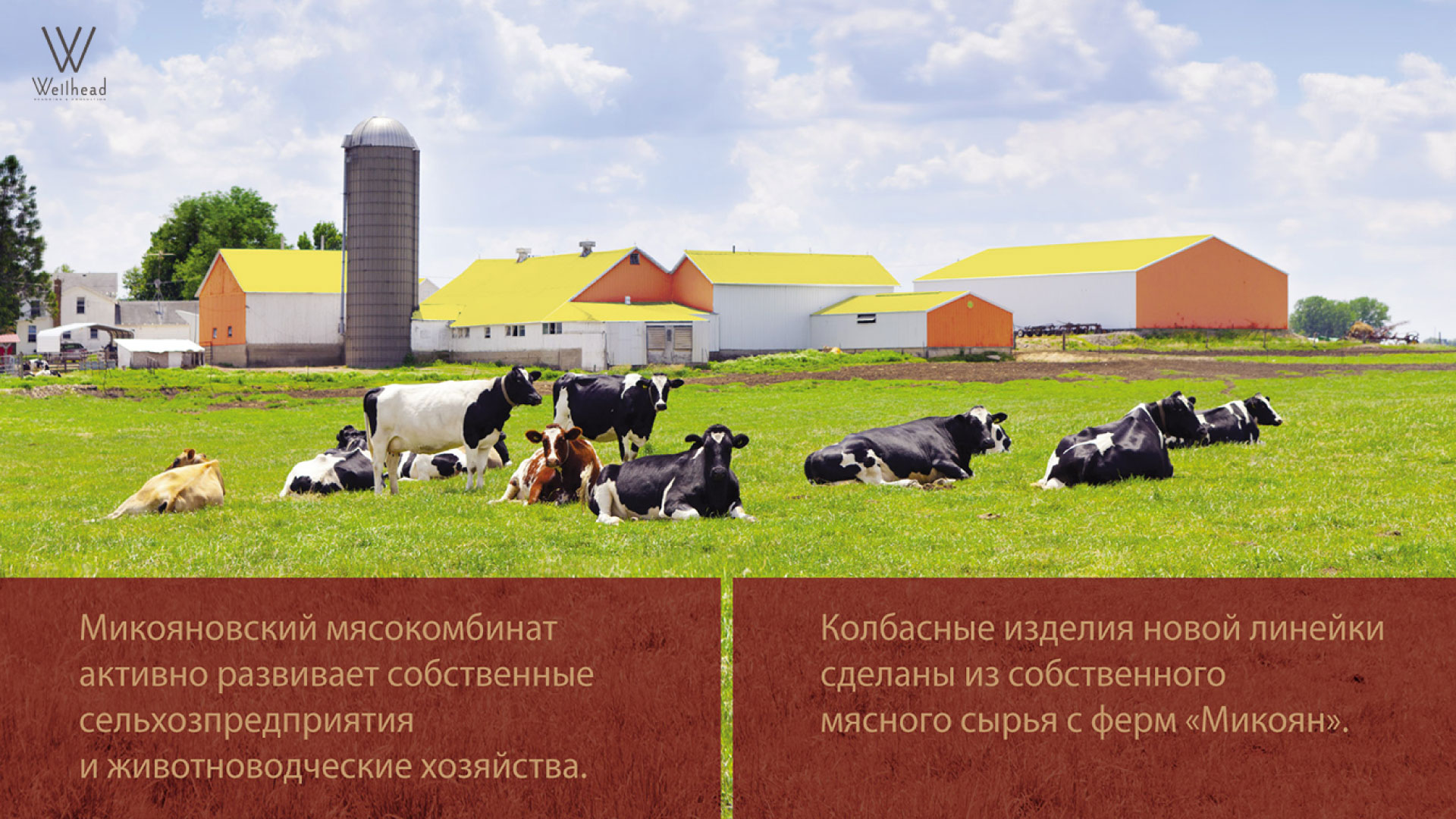 Новый бренд для Микояновского мясокомбината